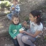 fotos escola maig15 095